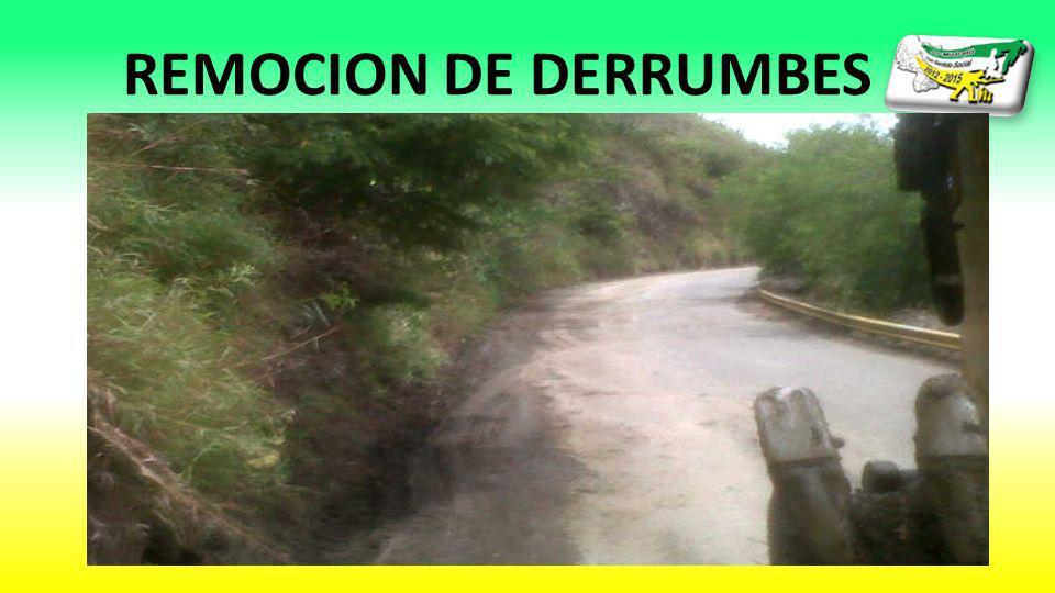 REMOCION DE DERRUMBES