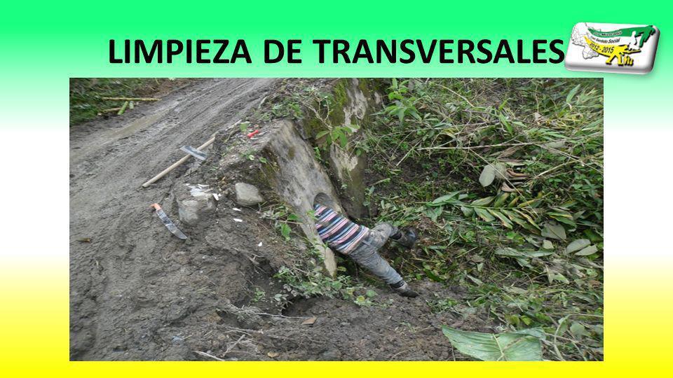 LIMPIEZA DE TRANSVERSALES