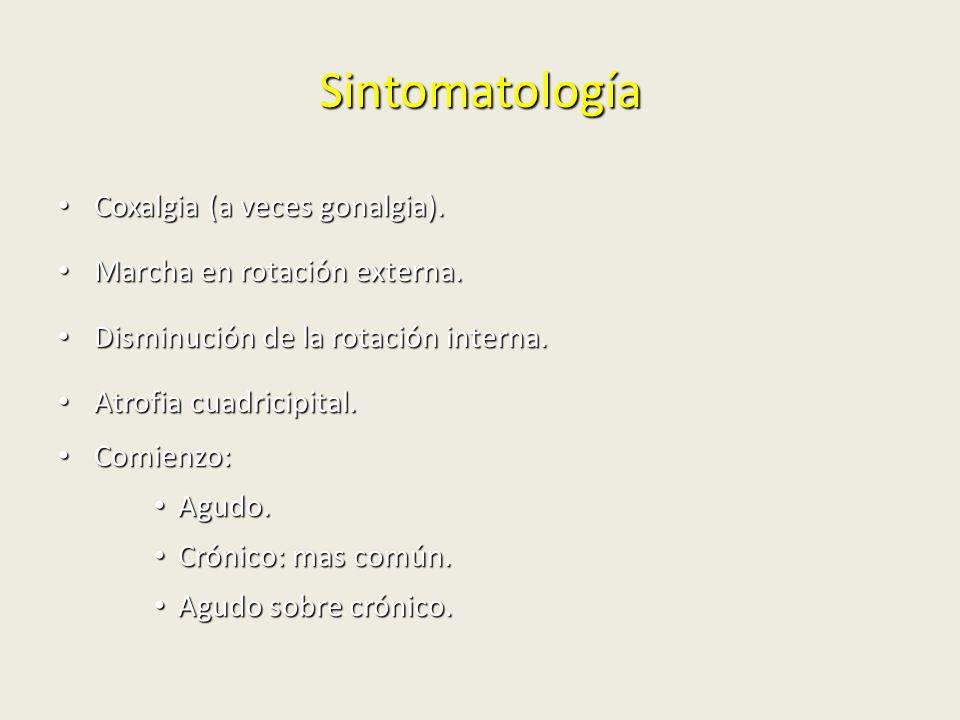 Sintomatología Coxalgia (a veces gonalgia).