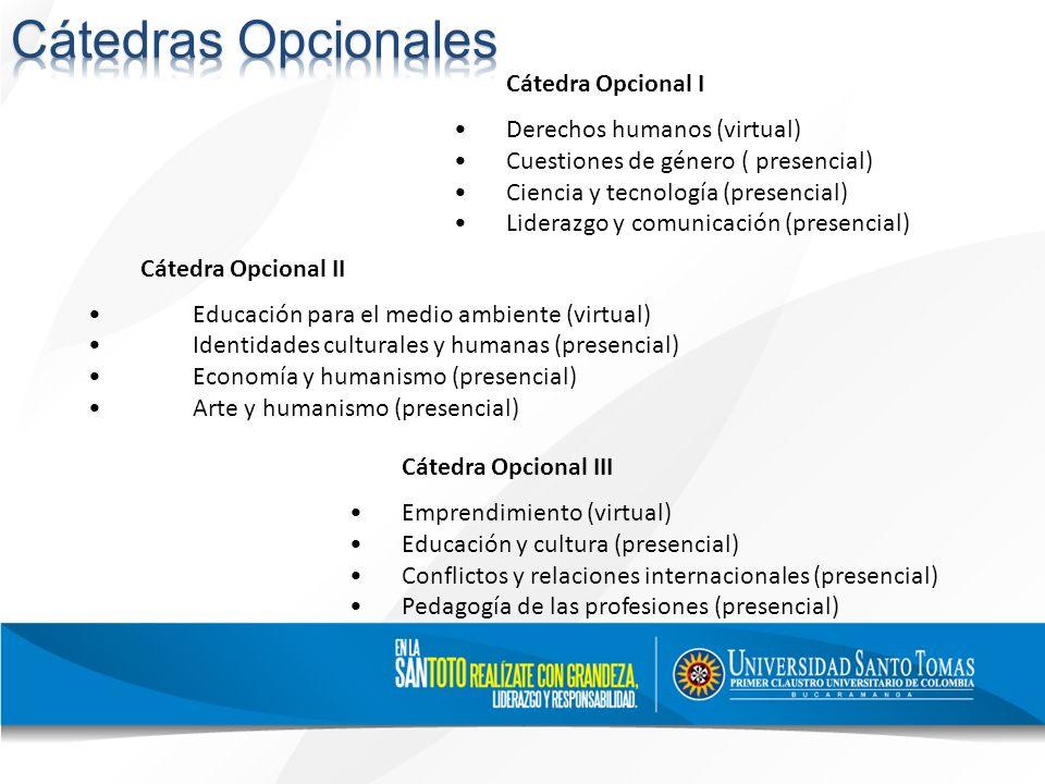 Cátedras Opcionales Cátedra Opcional I • Derechos humanos (virtual)