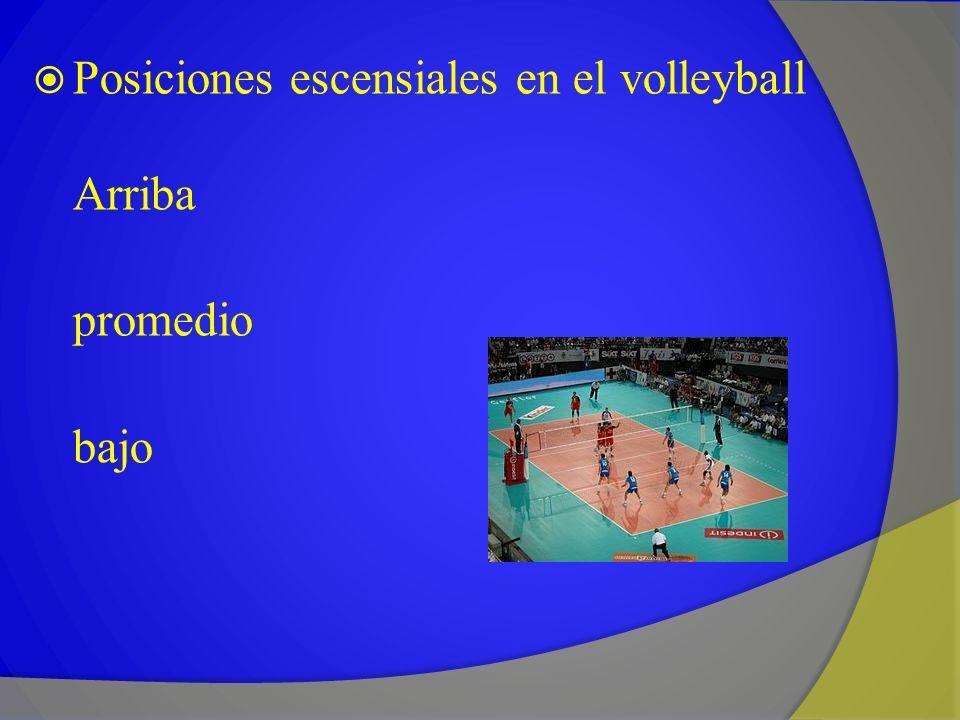 Posiciones escensiales en el volleyball Arriba