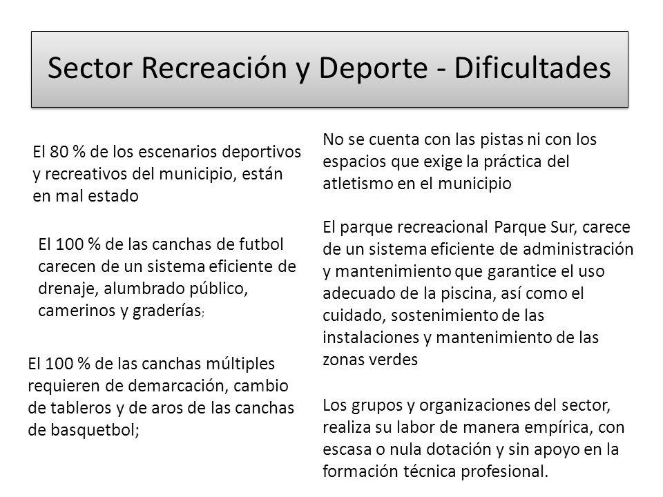 Sector Recreación y Deporte - Dificultades