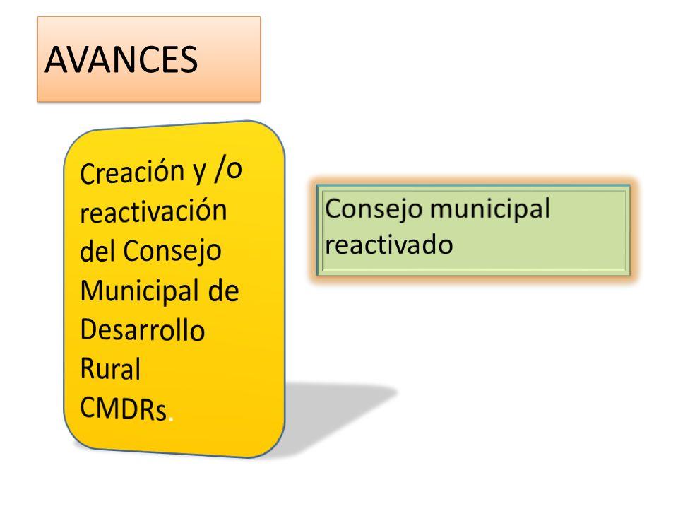 AVANCES Creación y /o reactivación del Consejo Municipal de Desarrollo Rural.