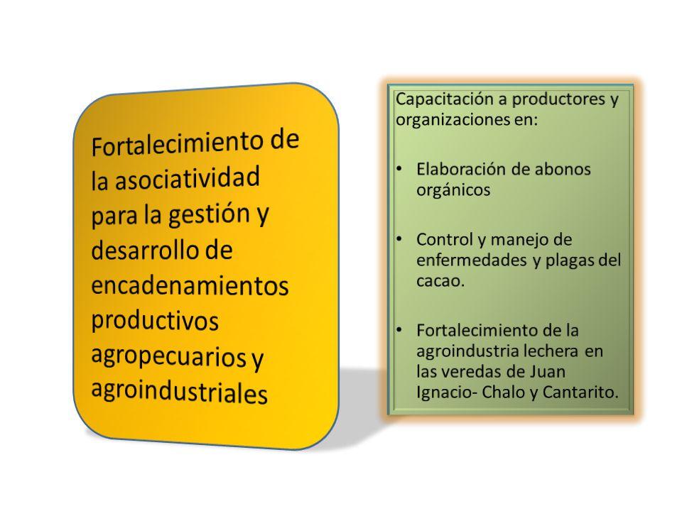 Fortalecimiento de la asociatividad para la gestión y desarrollo de