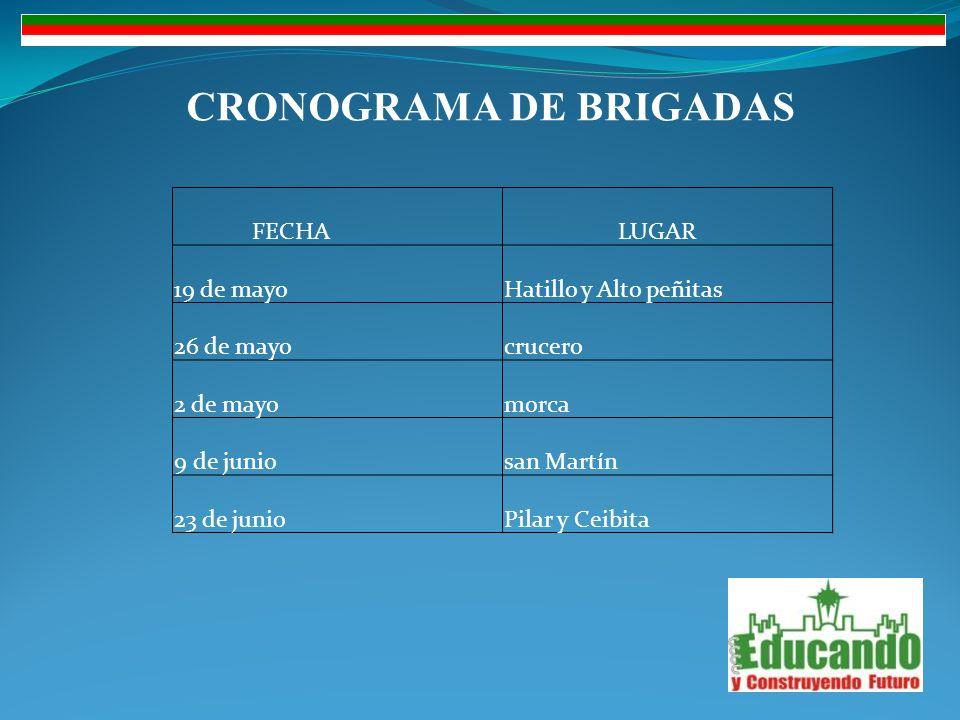 CRONOGRAMA DE BRIGADAS