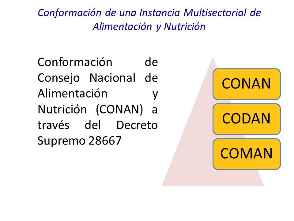 Conformación de una Instancia Multisectorial de Alimentación y Nutrición