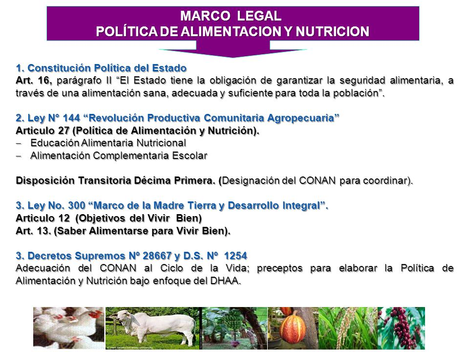 POLÍTICA DE ALIMENTACION Y NUTRICION