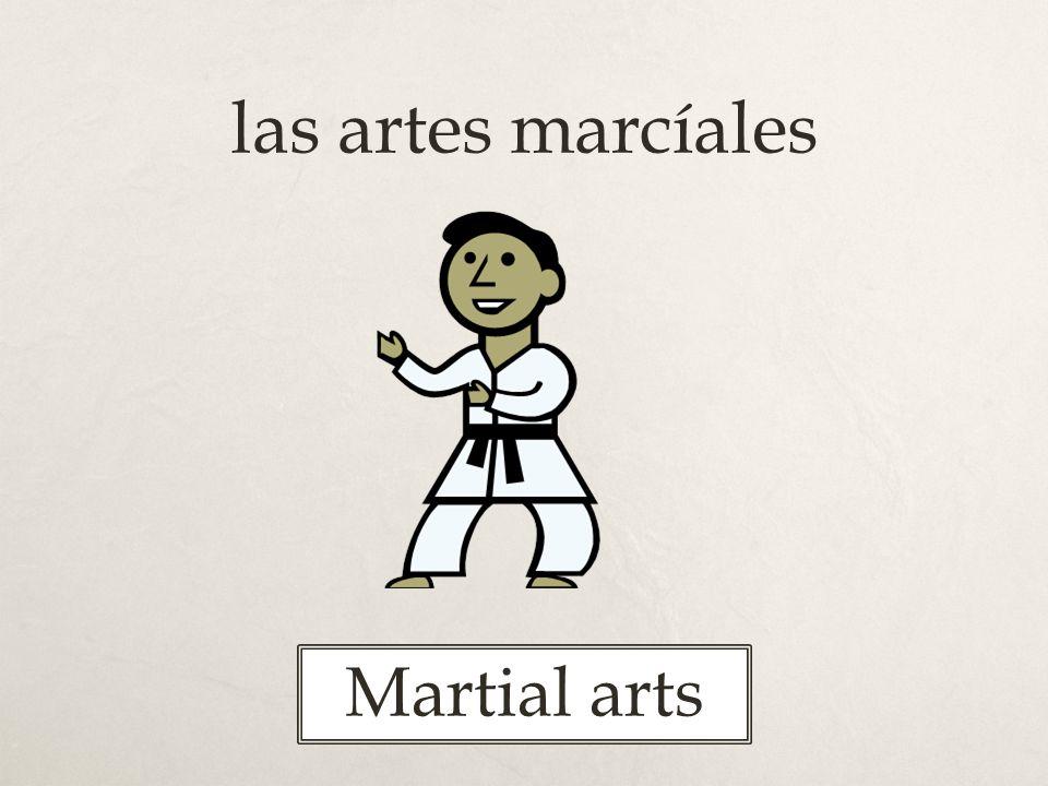 las artes marcíales Martial arts