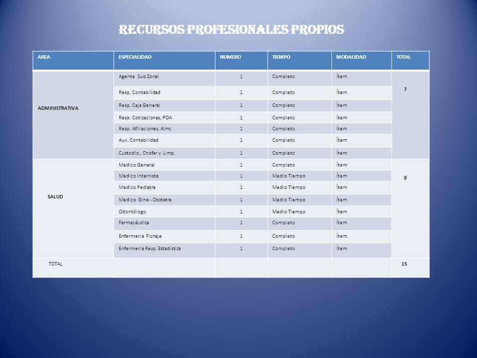 RECURSOS PROFESIONALES PROPIOS