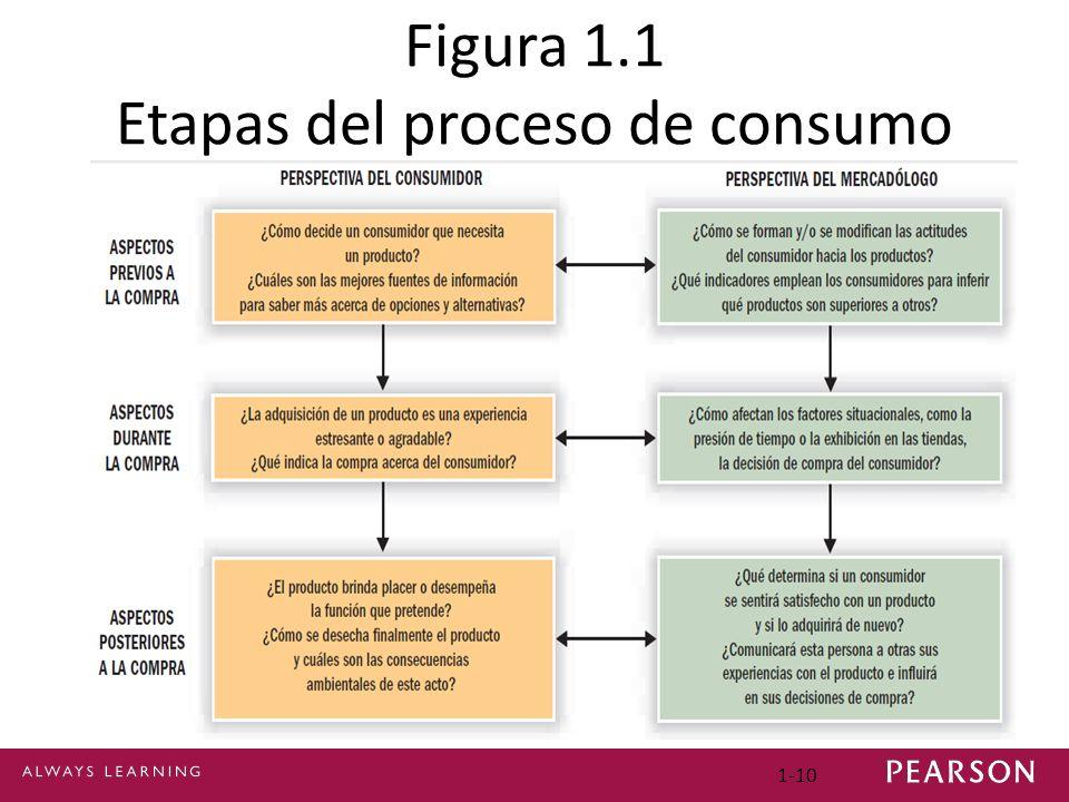 Figura 1.1 Etapas del proceso de consumo