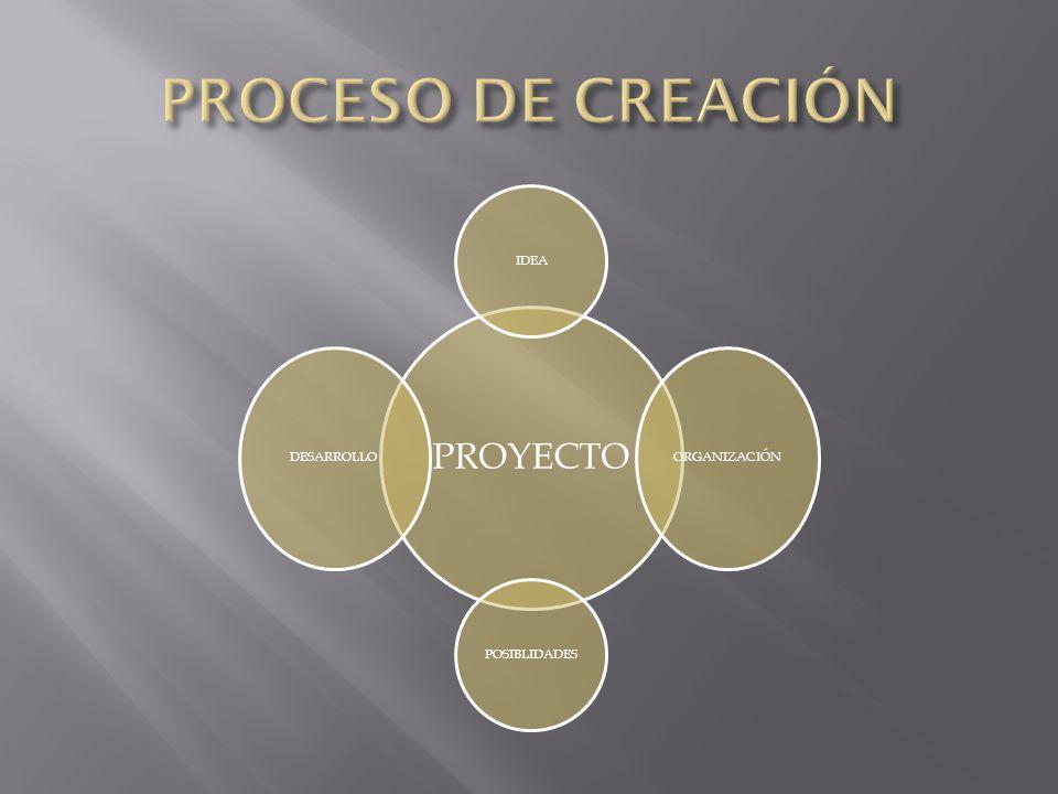 PROCESO DE CREACIÓN PROYECTO IDEA ORGANIZACIÓN POSIBLIDADES DESARROLLO