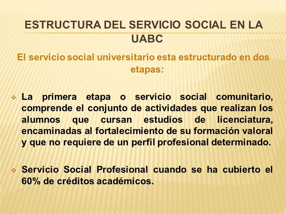 ESTRUCTURA DEL SERVICIO SOCIAL EN LA UABC