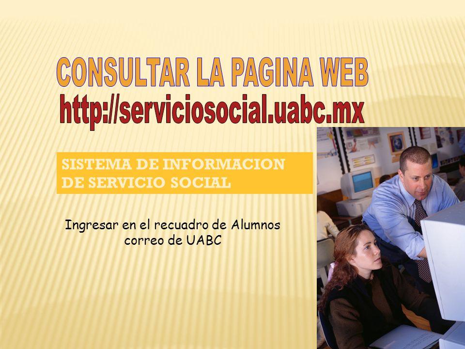 CONSULTAR LA PAGINA WEB