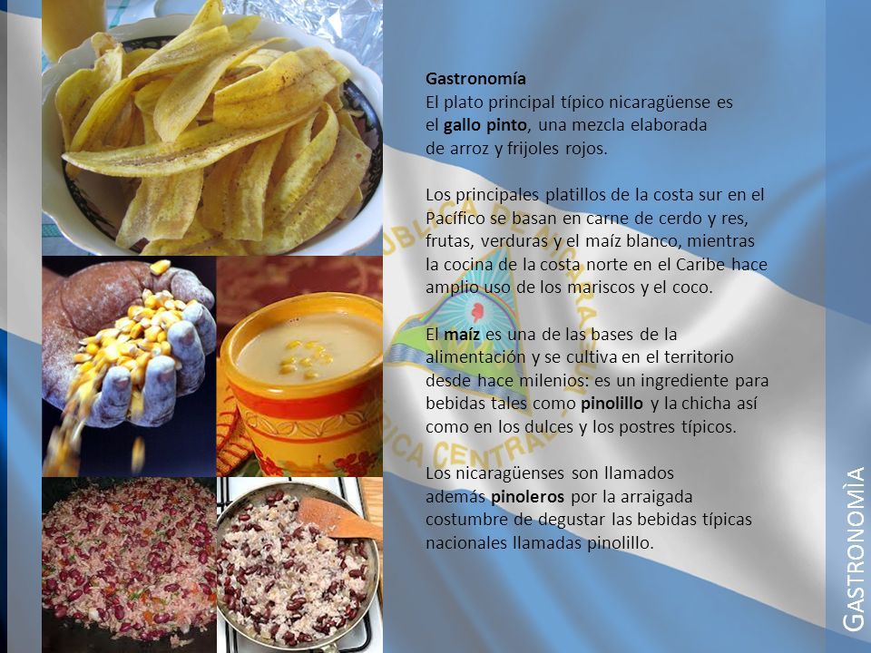 Gastronomìa Gastronomía