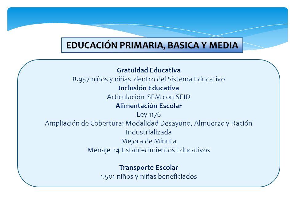 EDUCACIÓN PRIMARIA, BASICA Y MEDIA