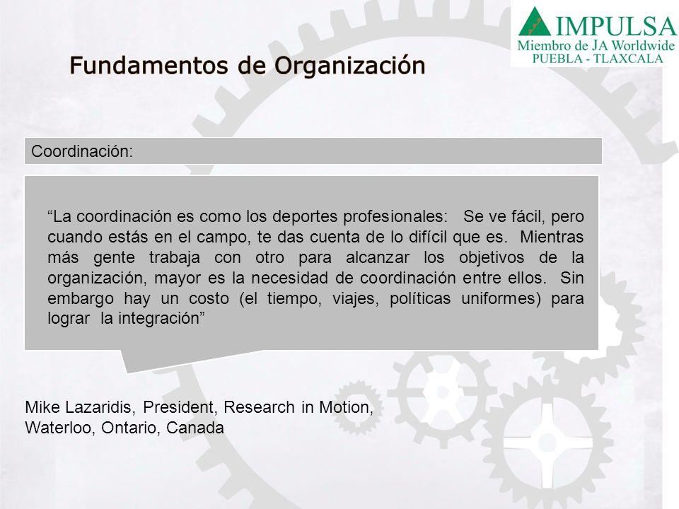 Fundamentos de Organización