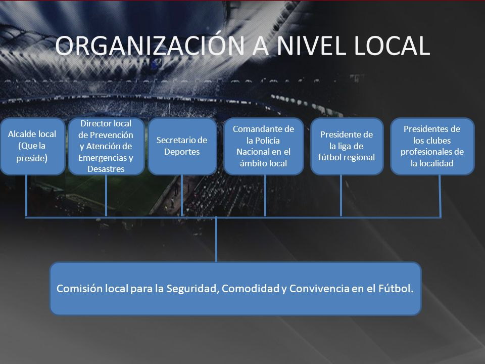 ORGANIZACIÓN A NIVEL LOCAL
