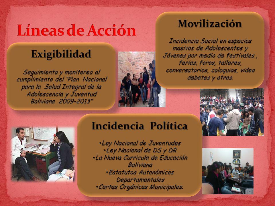 Líneas de Acción Movilización Exigibilidad Incidencia Política