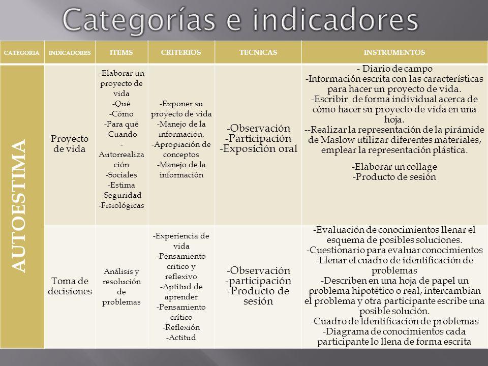 Categorías e indicadores