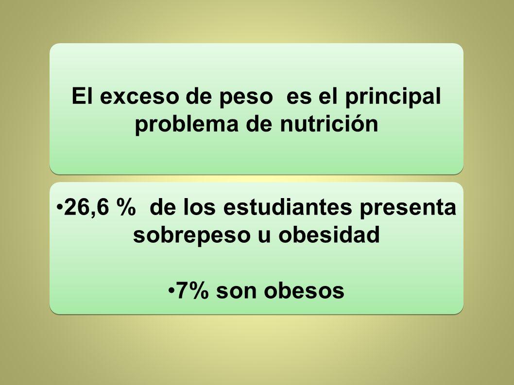El exceso de peso es el principal problema de nutrición