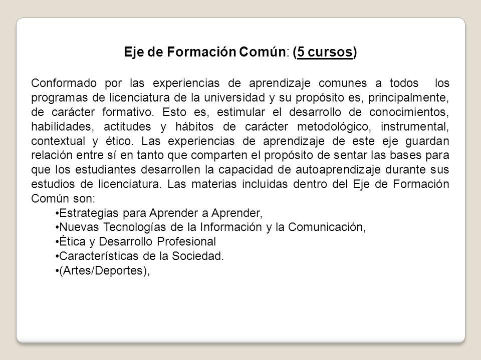 Eje de Formación Común: (5 cursos)