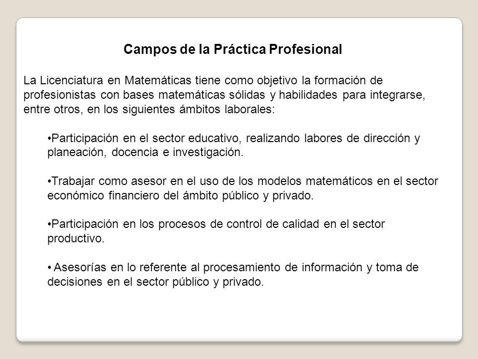 Campos de la Práctica Profesional