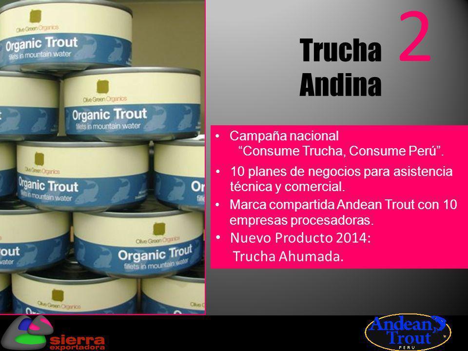 3 Quinua 4,000 hectáreas asistidas técnicamente.