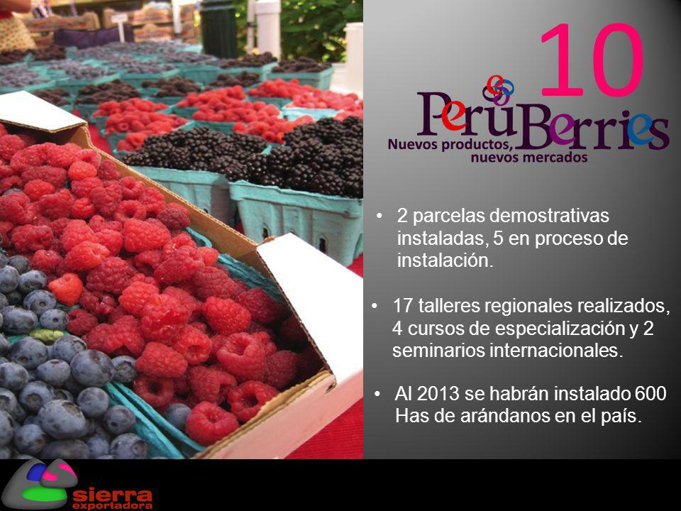 3. El Negocio del Futuro: Super Foods, Super Fruits