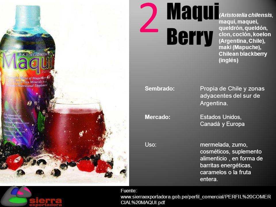 2 Maqui Berry (Aristotelia chilensis o maqui)