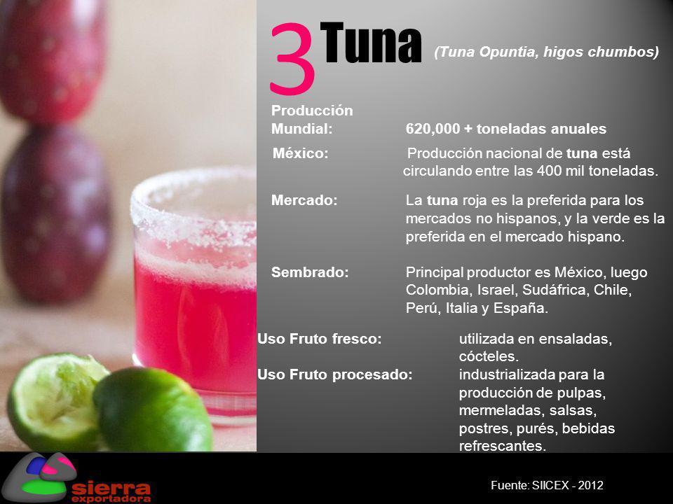 3 Tuna (Tuna Opuntia, higos chumbos)