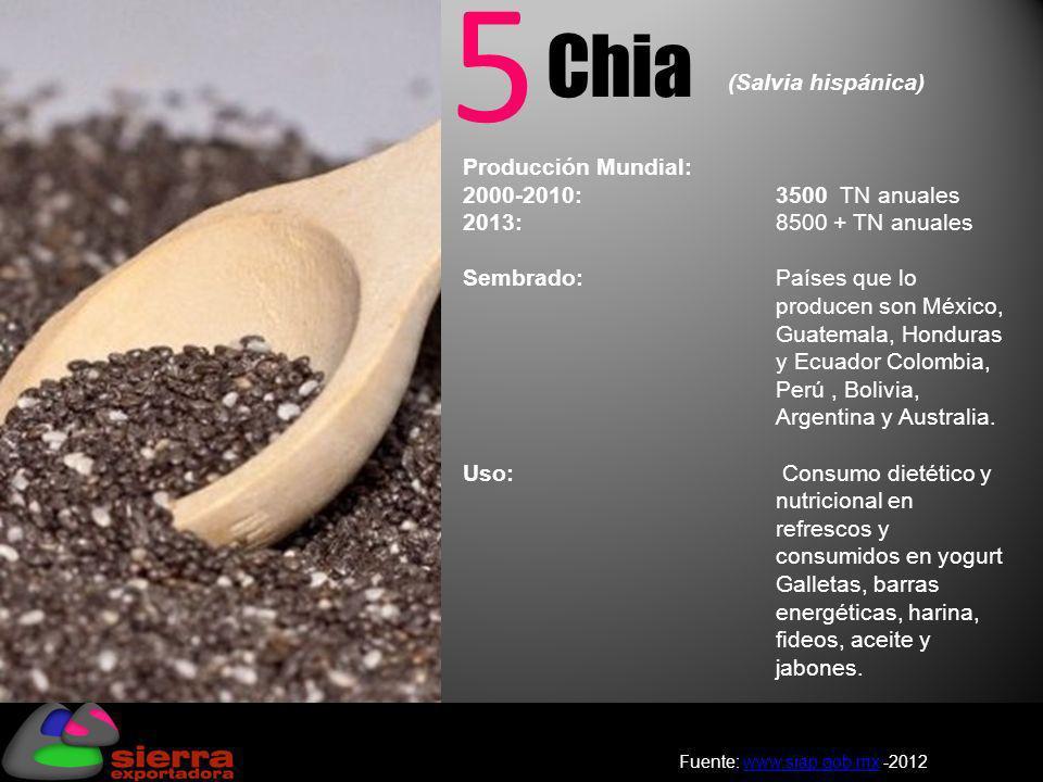 5 Chia (Salvia hispánica)