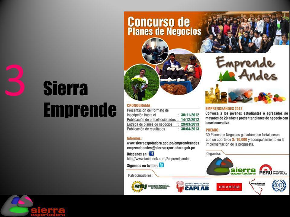 4 Sierra Innova Actividades: Talleres de facilitación de tecnologías