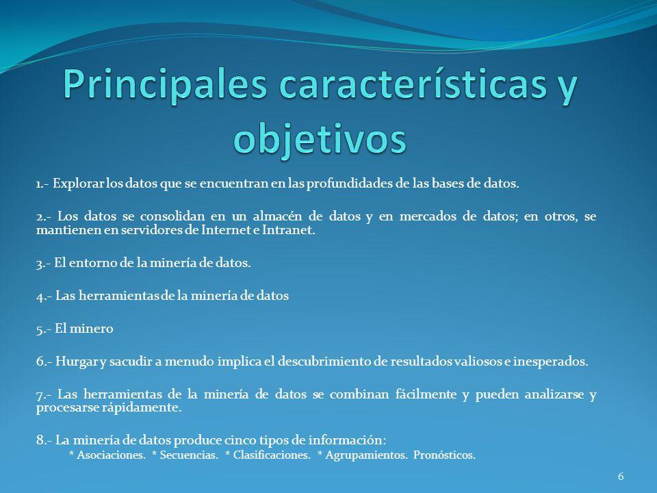 Principales características y objetivos