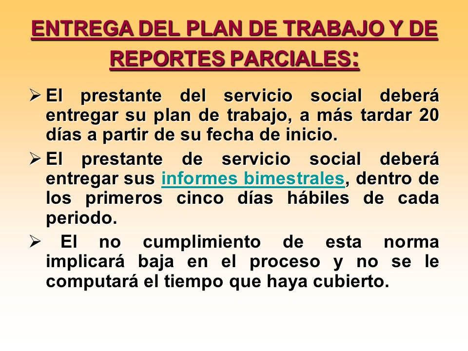 ENTREGA DEL PLAN DE TRABAJO Y DE REPORTES PARCIALES: