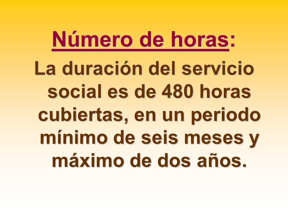 Número de horas:La duración del servicio social es de 480 horas cubiertas, en un periodo mínimo de seis meses y máximo de dos años.