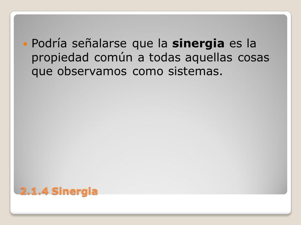 Podría señalarse que la sinergia es la propiedad común a todas aquellas cosas que observamos como sistemas.