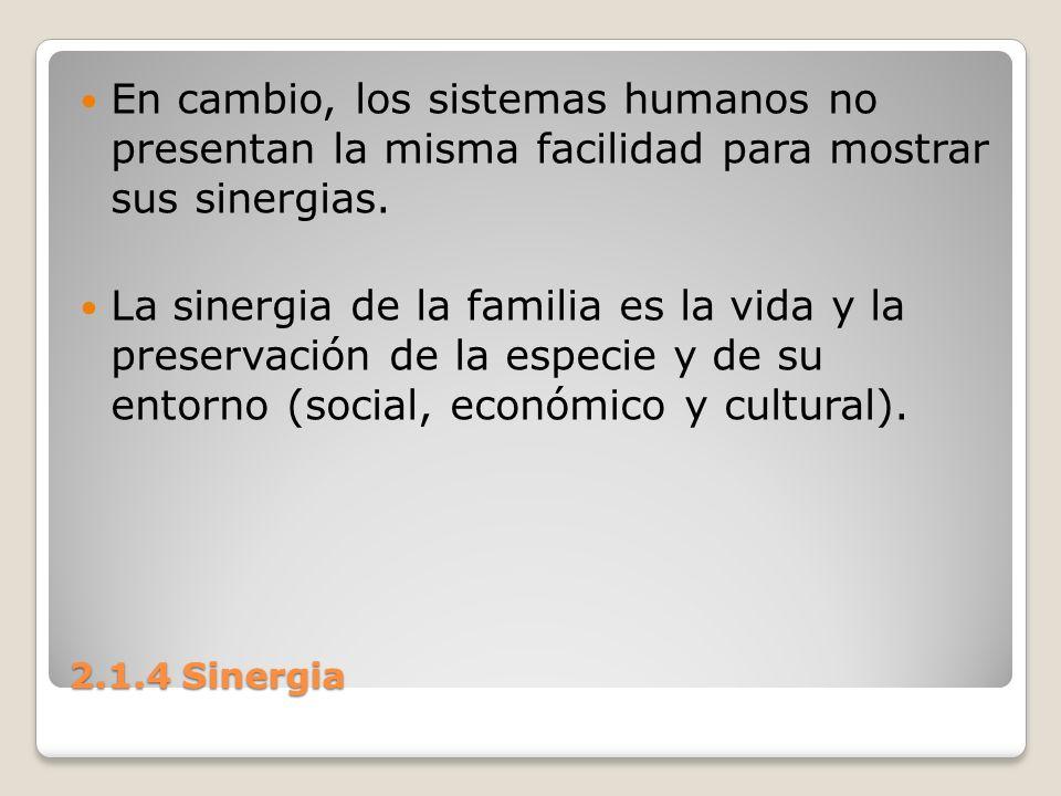 En cambio, los sistemas humanos no presentan la misma facilidad para mostrar sus sinergias.