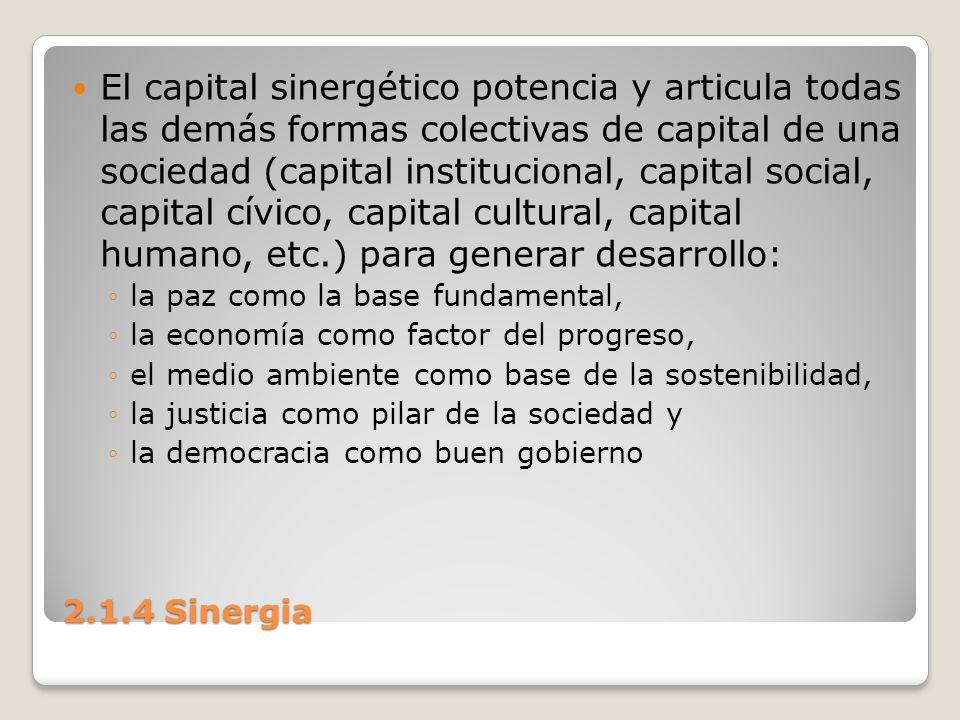 El capital sinergético potencia y articula todas las demás formas colectivas de capital de una sociedad (capital institucional, capital social, capital cívico, capital cultural, capital humano, etc.) para generar desarrollo: