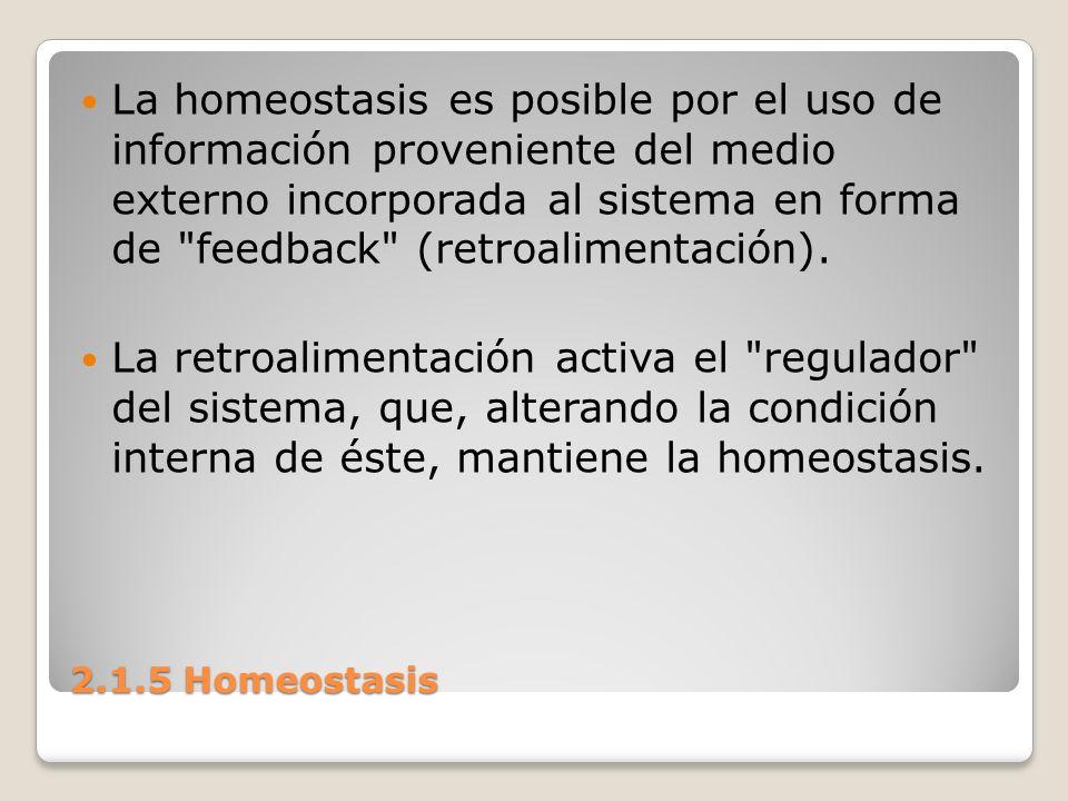 La homeostasis es posible por el uso de información proveniente del medio externo incorporada al sistema en forma de feedback (retroalimentación).
