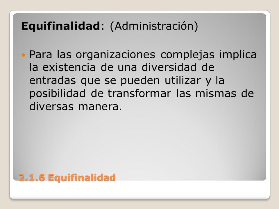 Equifinalidad: (Administración)