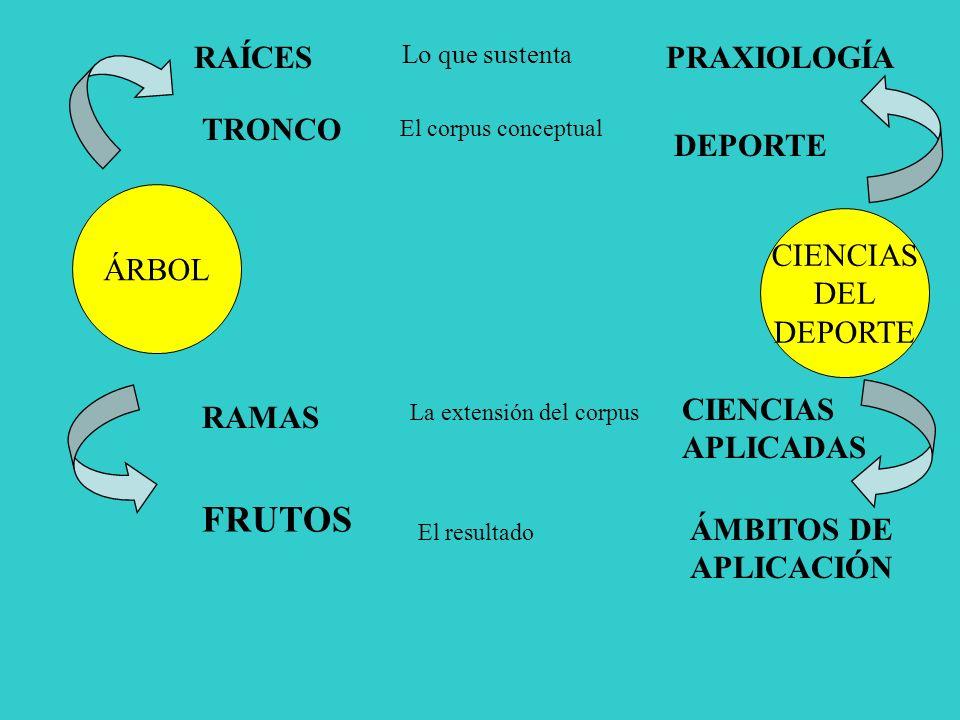 FRUTOS RAÍCES PRAXIOLOGÍA TRONCO DEPORTE ÁRBOL CIENCIAS DEL DEPORTE