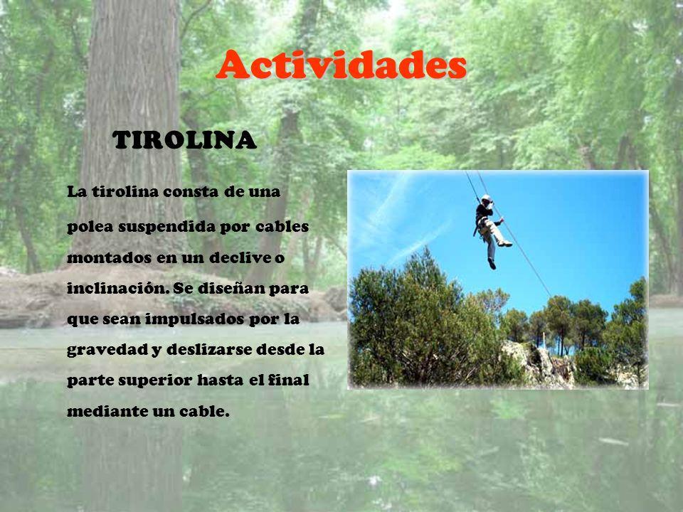 Actividades TIROLINA.
