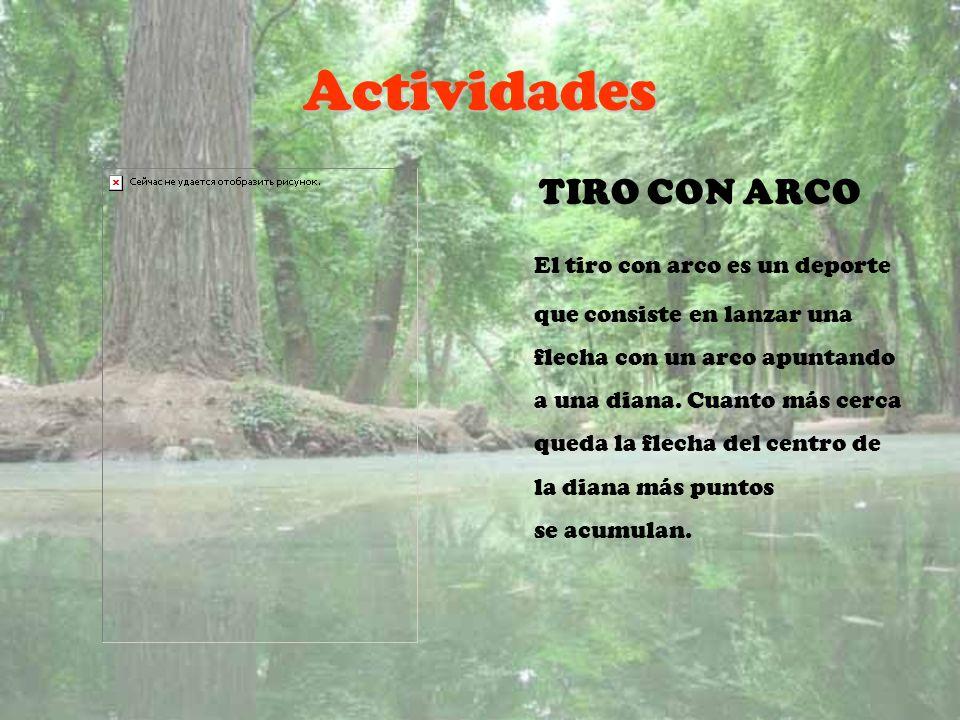 Actividades TIRO CON ARCO