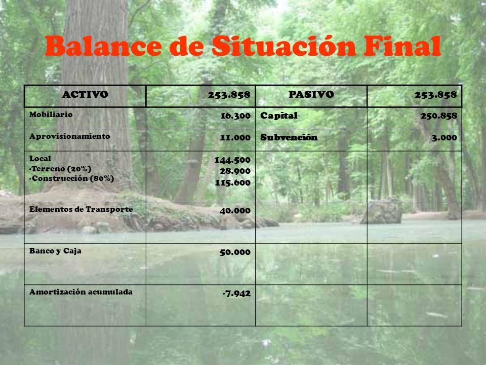 Balance de Situación Final