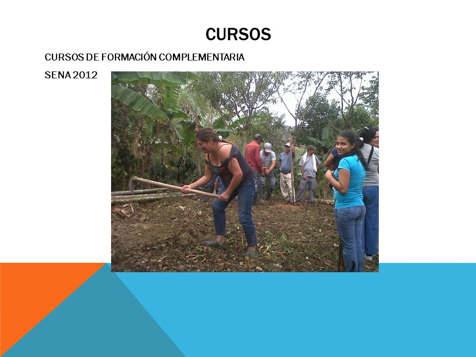 CURSOS CURSOS DE FORMACIÓN COMPLEMENTARIA SENA 2012