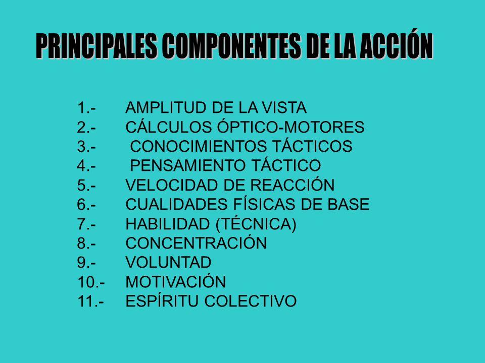 PRINCIPALES COMPONENTES DE LA ACCIÓN