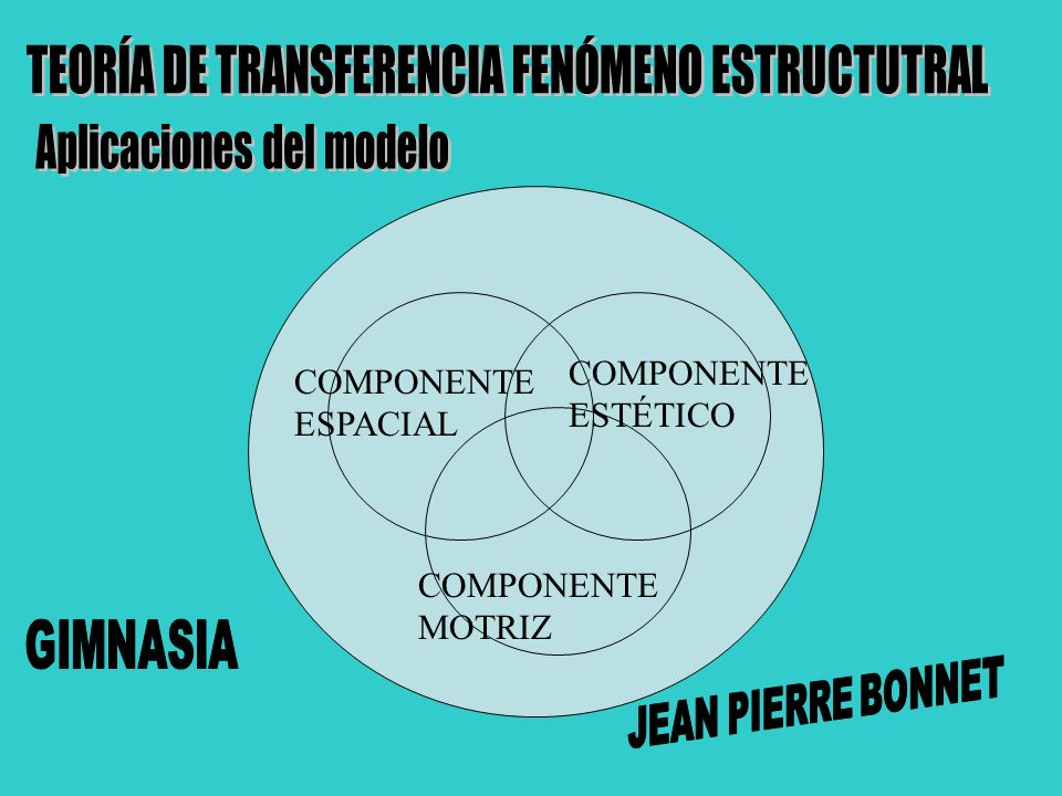 TEORÍA DE TRANSFERENCIA FENÓMENO ESTRUCTUTRAL