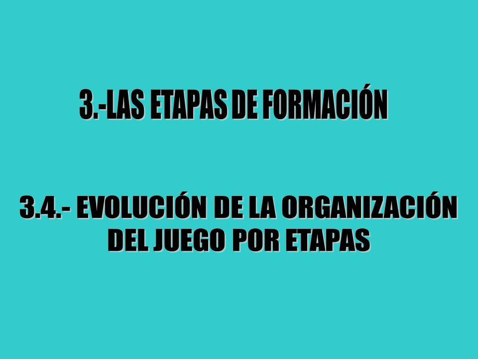 3.-LAS ETAPAS DE FORMACIÓN