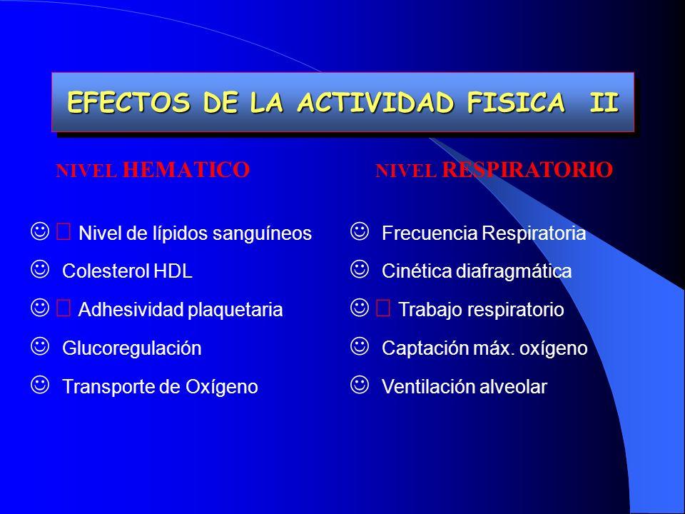 EFECTOS DE LA ACTIVIDAD FISICA II