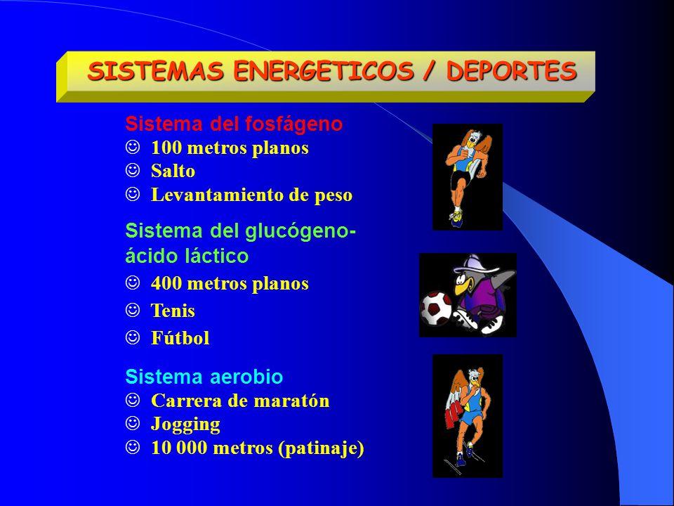 SISTEMAS ENERGETICOS / DEPORTES